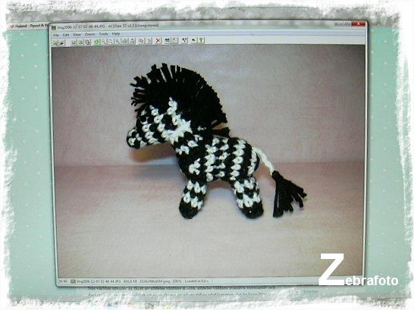 virkad zebra
