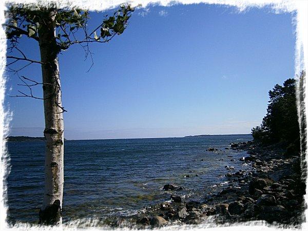 Sommarsolståndet vid havet