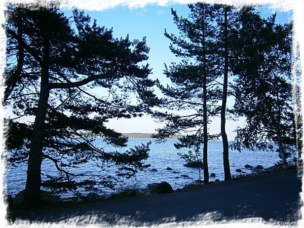Havet sett från lånebilen