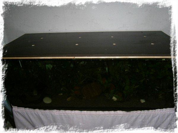 Akvarie med inbyggt mörker