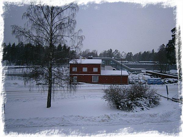 Utanför mitt fönster - Imbolc 2012