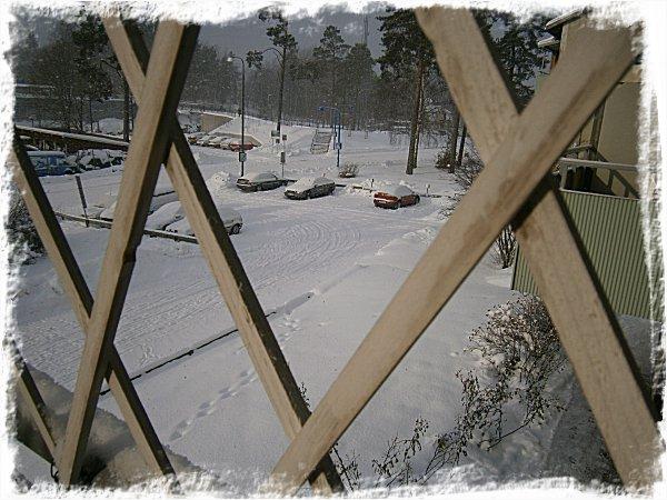 Snösol