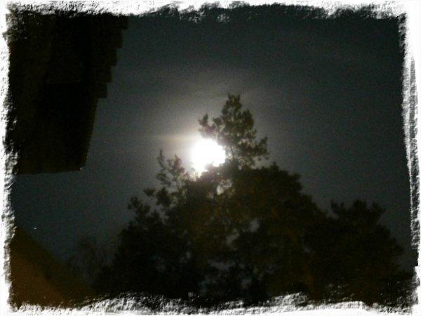Månen vandrar sin tysta ban