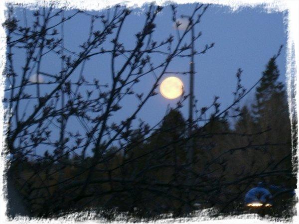 ...och den tredje är månen den gula