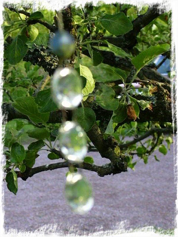 Kristallprisma