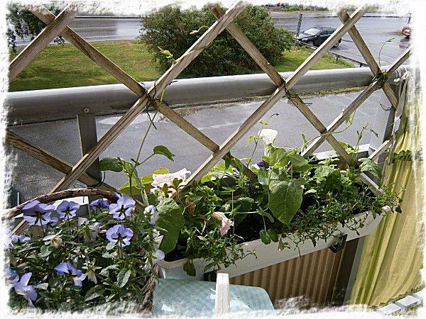 En annan balkonglåda