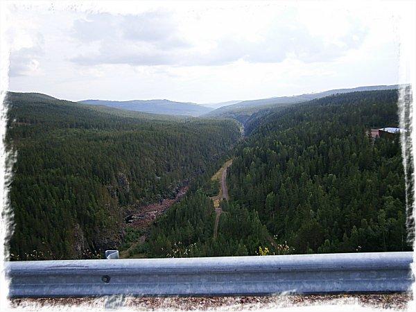 Trängseldammen - dalsidan