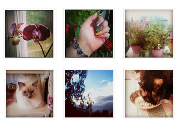 Exempel på mina instagrambilder