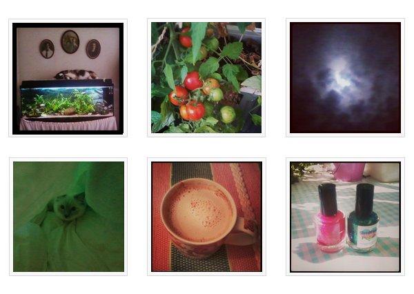 Mer exempel på mina instagrambilder